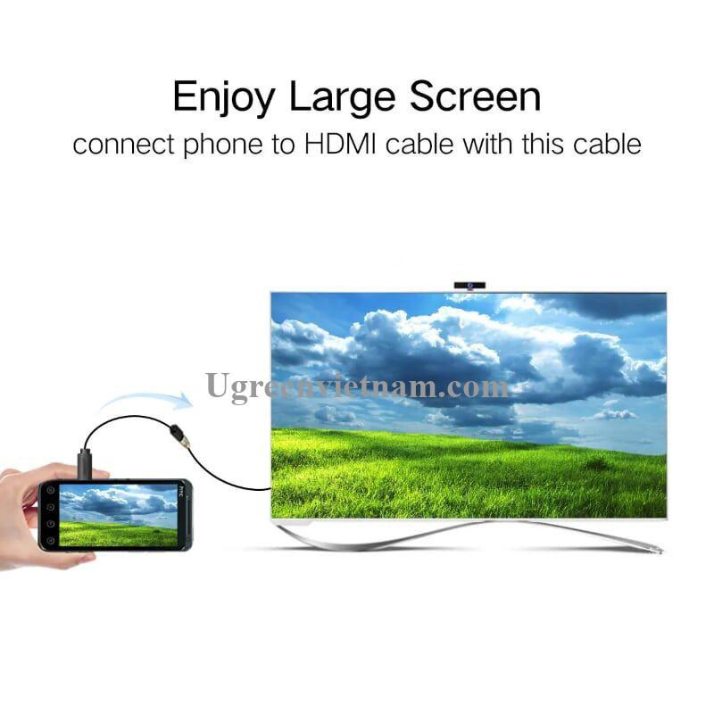 Ugreen 20134 Màu Đen Đầu chuyển đổi Micro HDMI sang HDMI âm 20134 20020134
